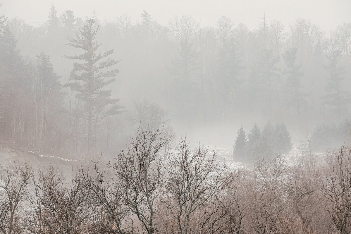 ©️ Domenico Antonio Galloro  #photography #NaturePhotography #thursdayvibes #grateful #hiking #LandscapePhotography #Photographer #PhotoOfTheDay #TwitterNatureCommunity #nature  #winter #blessed #travelphotography @FotoRshot @edayphotos @ThePhotoHour @LensAreLive @NikonUSA