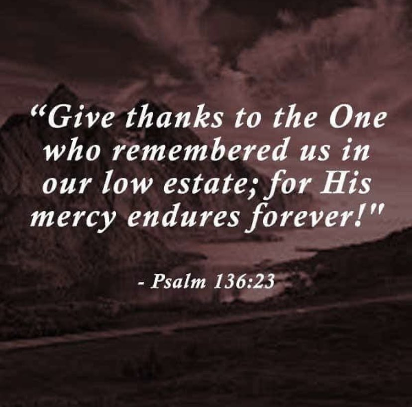 Happy Thanksgiving! 🦃🤍