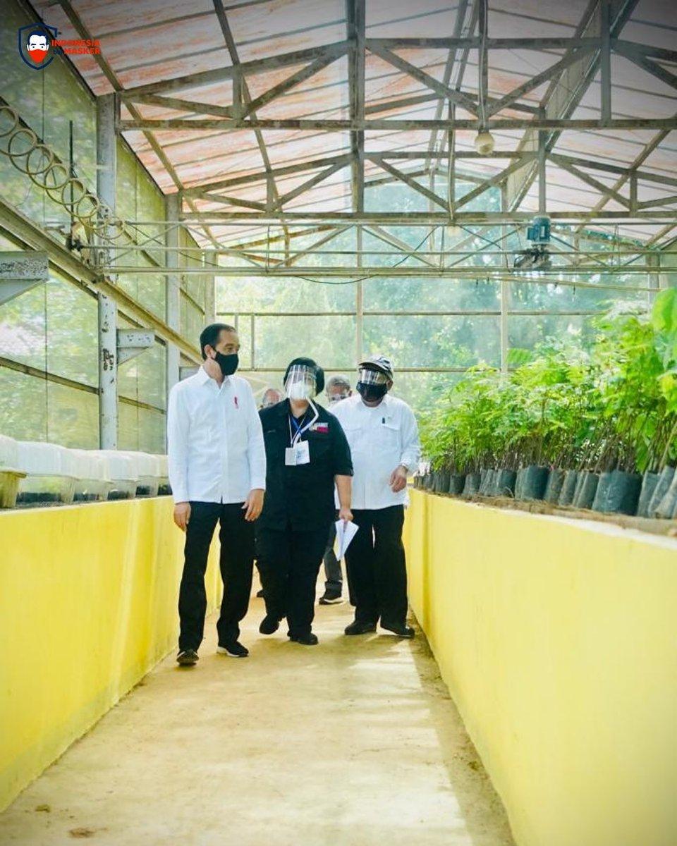 Saya meninjau Pusat Sumber Benih dan Persemaian Rumpin, Bogor, pagi ini. Kita sedang menyiapkan lokasi produksi bibit-bibit tanaman yang akan didistribusikan ke lokasi atau wilayah yang sering mengalami bencana banjir dan tanah longsor.   Saya berharap, tahun depan sudah selesai.