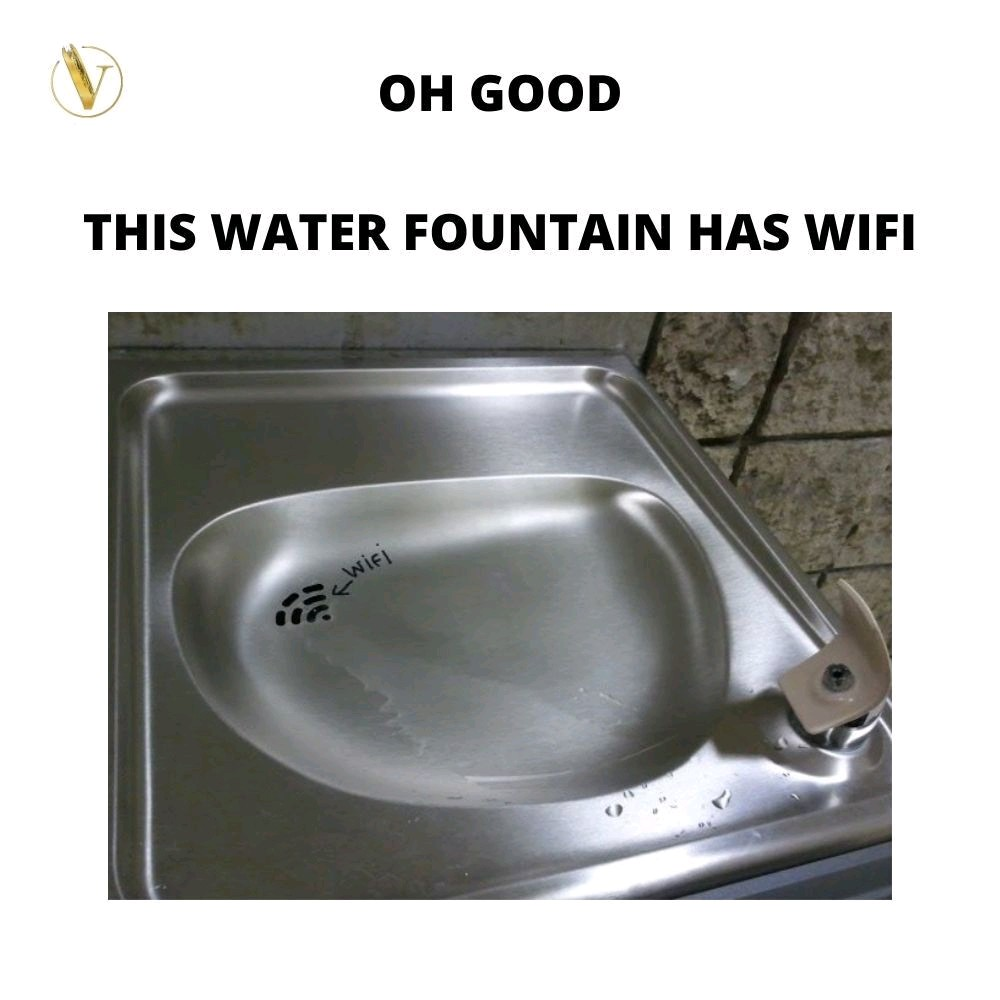 When you find smart water fountain with WiFi.  #meme #memes #bestmemes #instamemes #funny #funnymemes #funniestmemes #memesdaily #jokes #memesrlife #memestar #memesquad #humor #Imao #igmemes #lol #relatablememes #funnyposts #memetime https://t.co/okWXDj5mc5