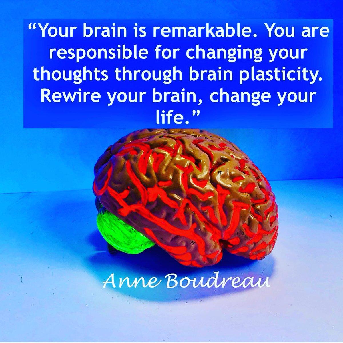 Anyone can change thoughts & behavior via neuroplasticity  never underestimate your brain. #brain #power #brainpower #brainhealth #rewireyourbrain #change #selfcare #negative #toxins #release #negativity #brainplasticity #Remarkable #antiaging #preventativehealth #health #rewire