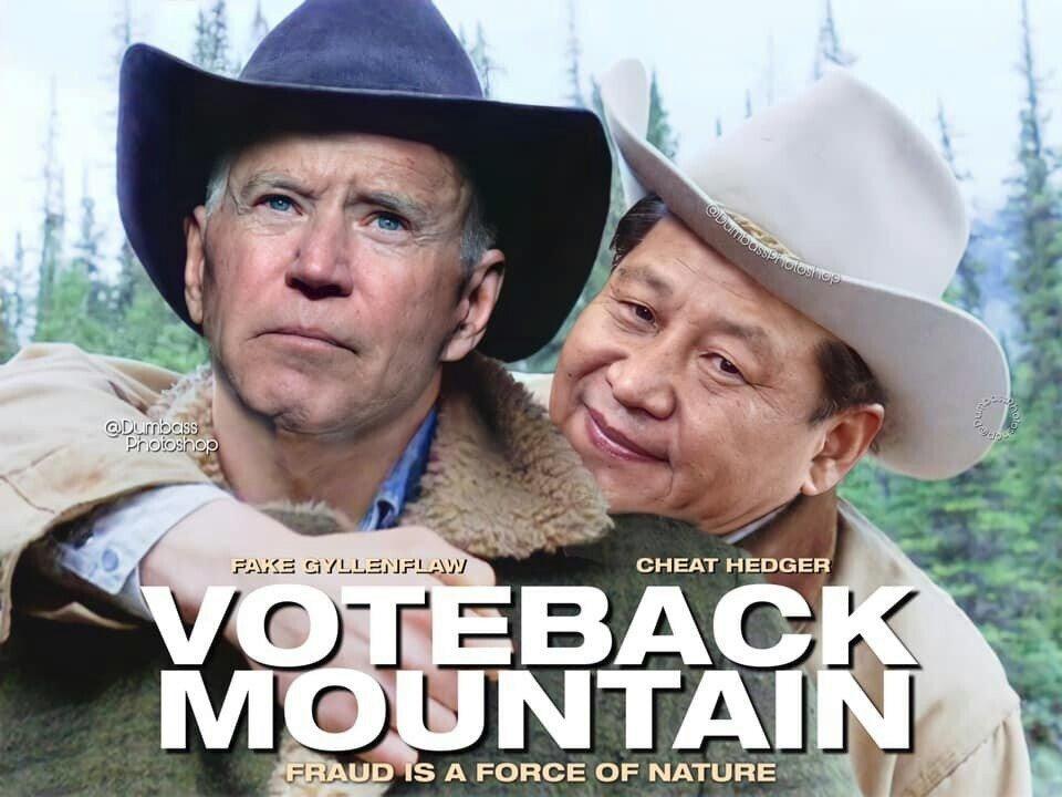 """🆔 Benny Q Whiteman [⏩📰💬] on Twitter: """"Today's meme : """" Voteback Mountain  """"… """""""