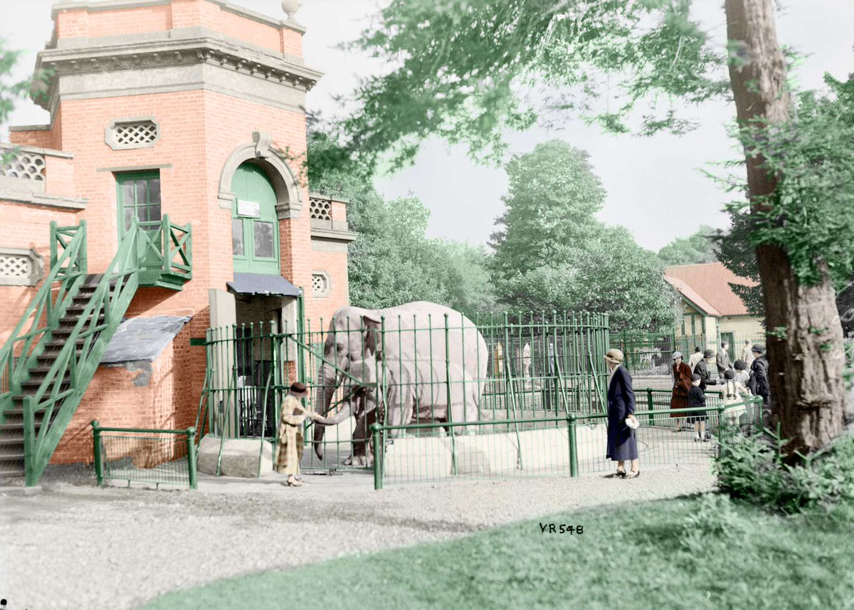 The Elephaant House at dublin Zoo. The Zoo, in Phoenix park was designed in 1830 by architect Decimus Burton and covers an area of 28 hectares. Digitally colourised by https://t.co/AKNis5kvdz #Dublin #Ireland #elephants #photoshop #colourising https://t.co/Sv1AC44luG
