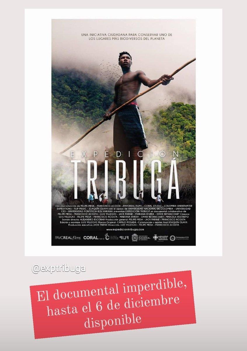 Imperdible el Documental de #Tribuga hasta el 6 disponible en   #NoAlPuertodeTribuga #vivaelplaneta #Chocó #SOSChoco