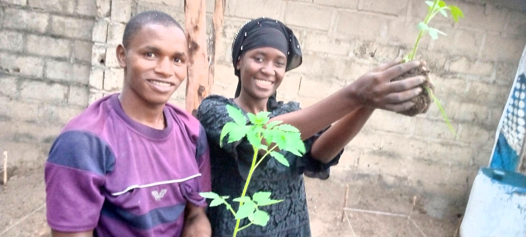 While the weekend is meant for some people to be at home, at AquaOrganic we are delighted to introduce to our PHASE III of transplanting seedlings. 60 Tomatoes 🍅   and 56 Cucumbers 🥒 seedlings are planted. #EndFoodInSecurityInGambia #ZeroHunger #NoPoverty #FeedTheGambia