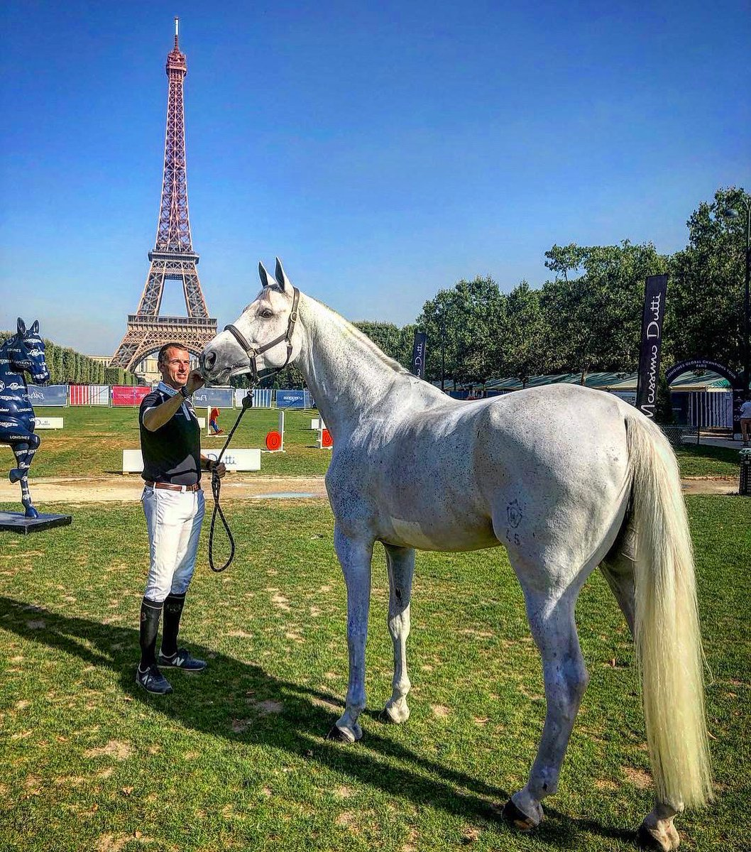 #TBT to that time we filmed with @gregorywathelet_official and the gorgeous Coree under the #EiffelTower in #Paris 😍 Which horse would you like us to feature on film next year?