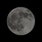 Image for the Tweet beginning: ということで、今のお月様。 さすが満月、めっちゃ明るい。  #満月 #満月の夜に #月が綺麗ですね