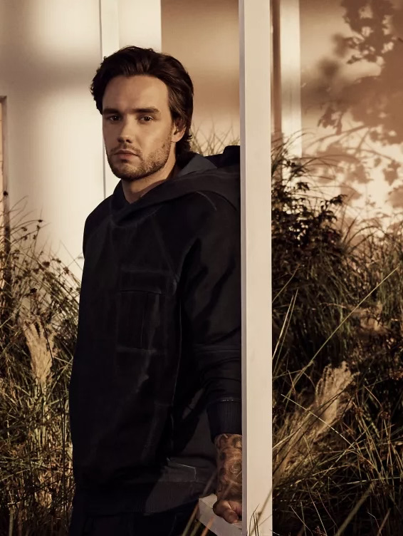 I CANT BELIEVE I WILL BE TWINNING WITH THIS BEAUTIFUL MAN IN THIS WONDERFUL HOODIE. #HugoXLiamPayne
