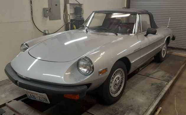 This 1979 Alfa Romeo Spider has been garaged for its entire life. It has 10,000 miles showing on its odometer and is one of the nicest examples you are ever likely to see. -> https://t.co/4gd7a2GvPX #AlfaRomeo #Spider https://t.co/AGpSpGeXEy