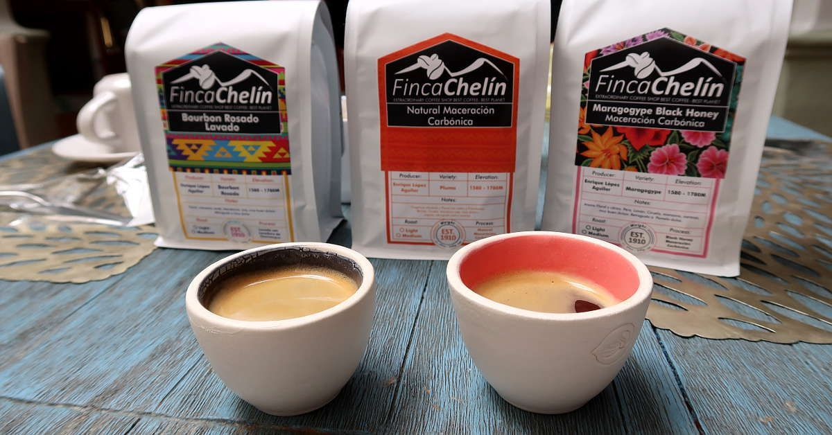 Are you a coffee lover? For an extraordinary coffee, check out Finca Chelin coffee from the Oaxaca region. https://t.co/B64m4Dq0C1 #Mexican #coffee #cafe https://t.co/Ke7fBVvAvN
