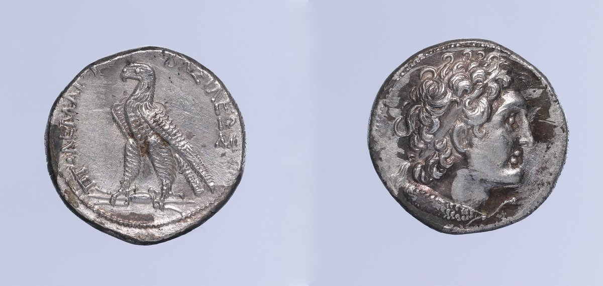 """A silver coin of Ptolemy VIII of #Egypt, known as """"the Benefactor"""". His reign (164–145 BC) was characterized by conflict with his brother Ptolemy VI and sister Cleopatra II, civil war, economic collapse, and mounting intervention of #Rome in #Egyptian affairs  #Greek #NorthAfrica"""