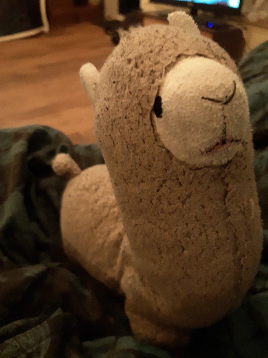 Zal ik mijn alpaca meenemen naar tussen kunst en kitsch om te kijken wat de liefhebber er voorover heeft? https://t.co/7tYRn2OGFa