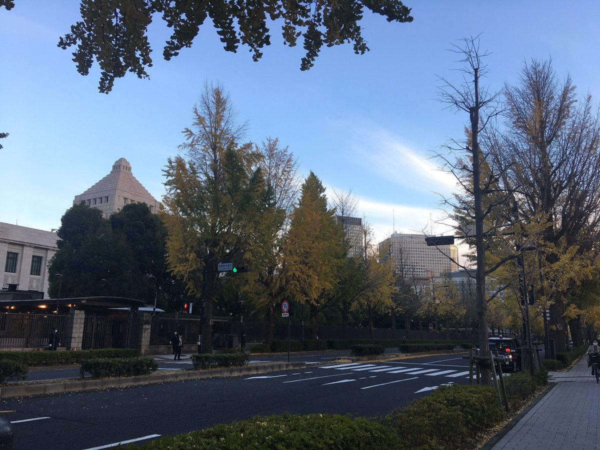昨日、日本学術会議会員任命拒否に関する院内集会に参加してきました。元TBSアナウンサーで現立憲民主党杉尾秀哉参議院議員や東京新聞の望月衣塑子記者、大学院生他、迫力あるスピーチが続きました。  気がつけばもうイチョウも散る季節です。#日本学術会議、#望月衣塑子、#立憲民主党 https://t.co/KEwm25m5PG