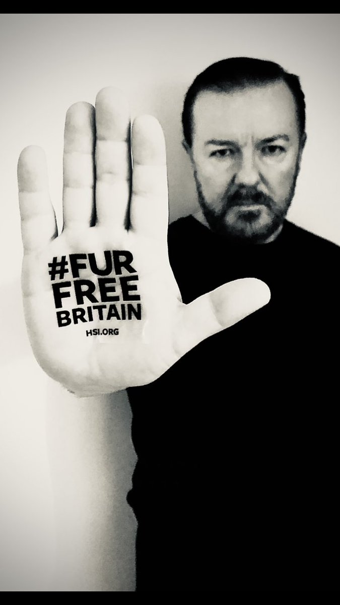 Support @HSIUKorg's #FurFreeBritain campaign for a UK fur sales ban.