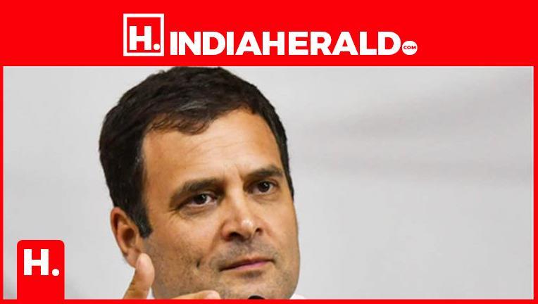 ఏఐసీసీ బాధ్యతలు రాహులకే  #rahul   #indiaherald  #indiaheraldgroup #Politics-IndiaHerald #TeluguIndiaHerald #Hareesh-IndiaHerald
