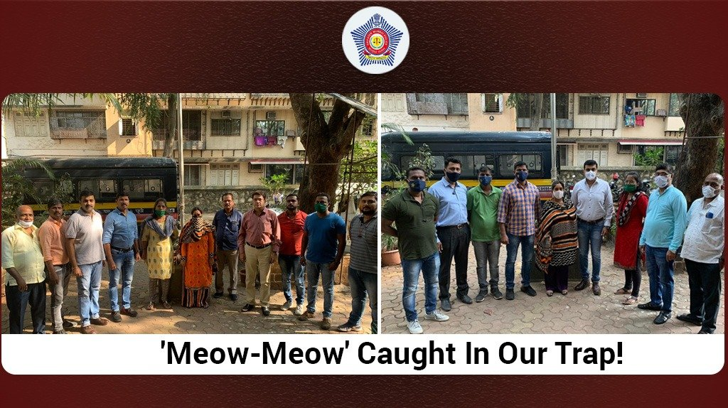 The Anti-Narcotics Cell, acting on a tip laid a trap and arrested a 26 y/o woman with possession of 503 grams of 'MD' or 'Meow-Meow'; the street value of which is over ₹50 Lakhs.  Investigation on its source and further distribution is currently underway.  #MumbaiCaseFiles