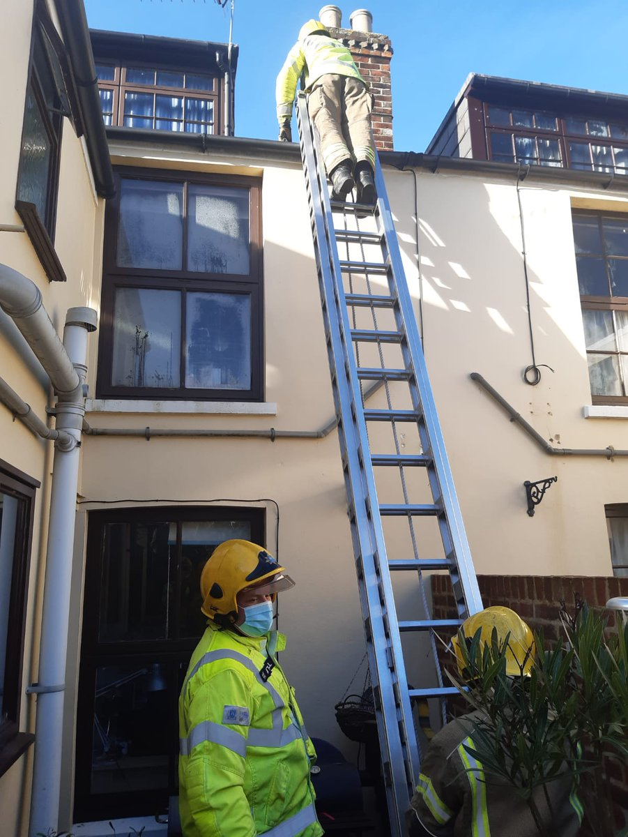 Turnout 01-12-2020 1135  H72P1 was mobilised to rescue a Herring gull from a roof in Cowes.  Gull was tangled in fishing line and had snagged on cables on a pitched roof.   105 ladder and net used to rescue the bird before handing over to the RSPCA.   #firefighter #oncall #cowes