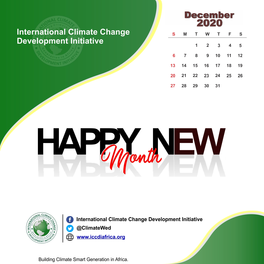 December is here! How are you feeling?   Lots of reflection to #BuildForwardBetter  #LetsDoMore as we call for more #ClimateAction across all sectors.   @Mo_UNDP @UNDPNigeria @NgeleAli @RichardMunang