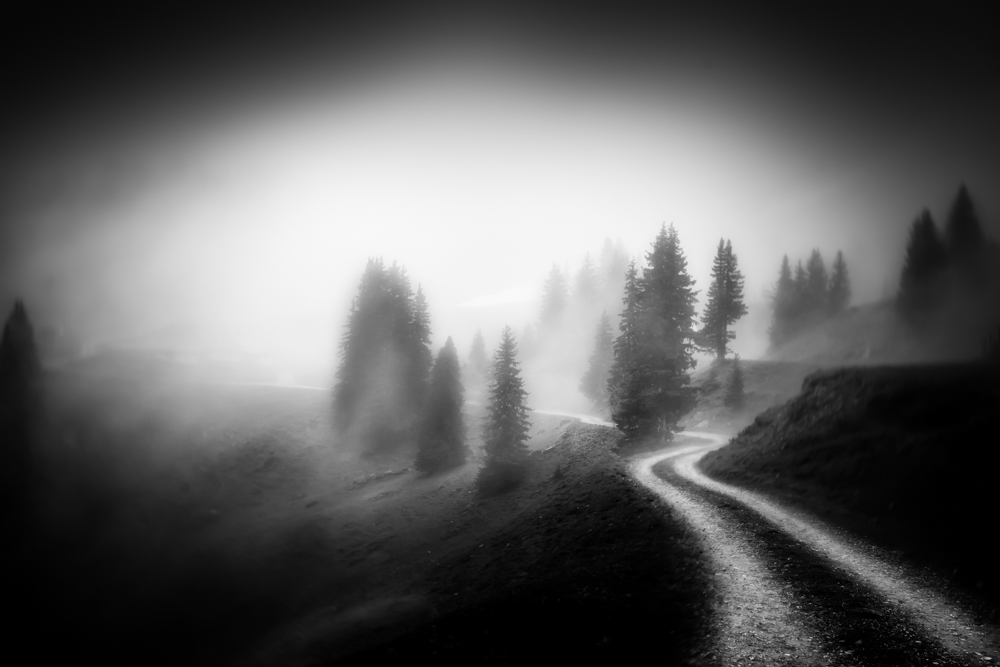 #Photo in the Swiss mountains by Nicole Keller (Switzerland) #Monochrome #blackandwhite #blackandwhitephotography