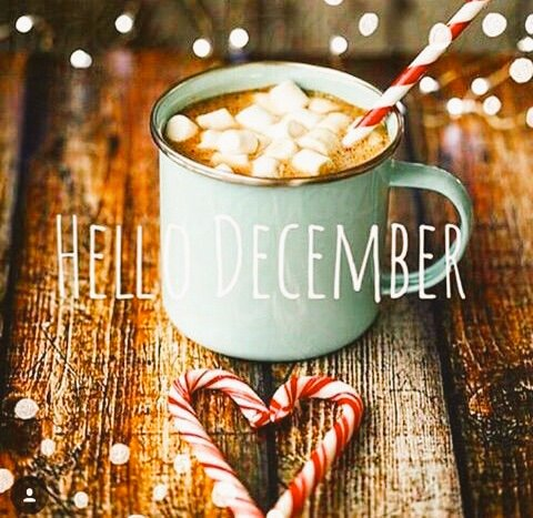 🎄 #HelloDecember ♥️ Happy and beautiful 🐿 #December1st! 🥁This will be a wonderful month filled with #Health, ♥️#Love, #Hope, ☃️#Peace and #Blessings! 🥰 When we 🧸#Love what we have we have everything we need! 👼 🎄👼♥️🏡♥️👼🎄  #December2020 #DecemberWish #DecemberToRemember