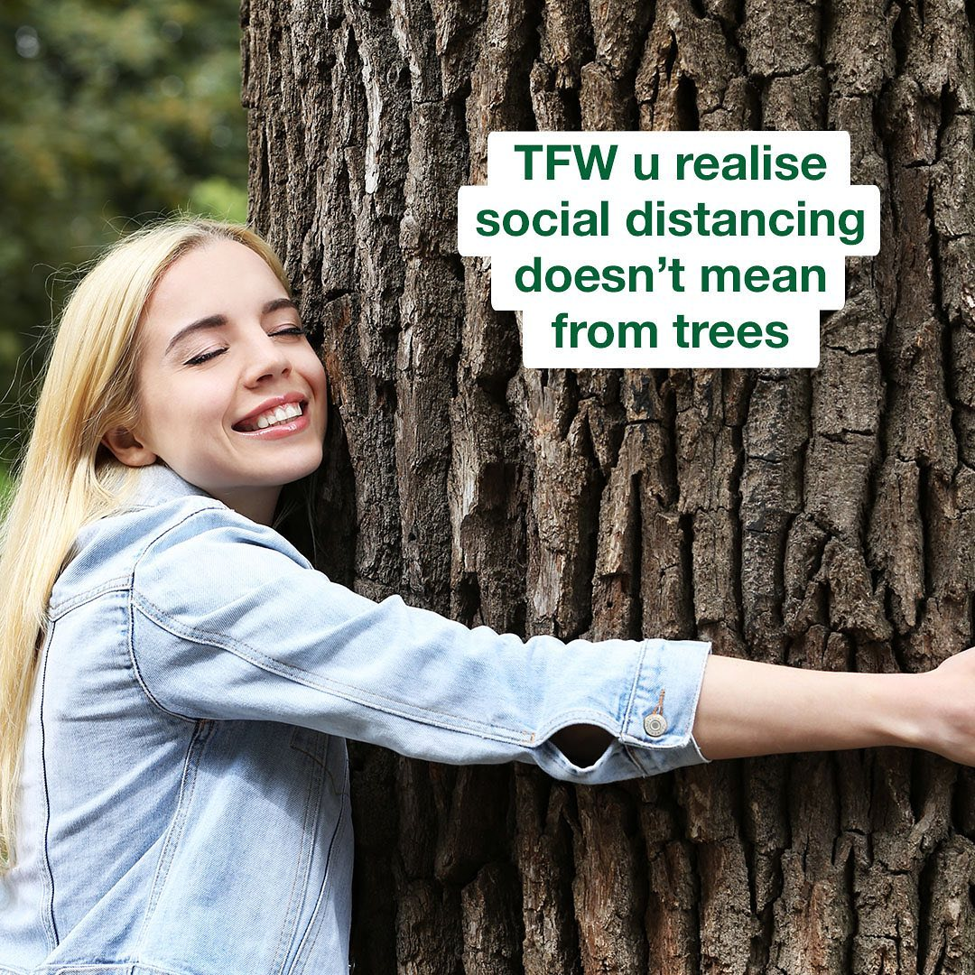 A *big mood* for #NationalTreeWeek 🌳  - DYK Simple are partnering with @WoodlandTrust to help restore + bring damaged ancient woodland back to life. Making sure they're still here for future generations of people + wildlife 🐌💚🐛  #treeweek #2020memes #sustainableskincare