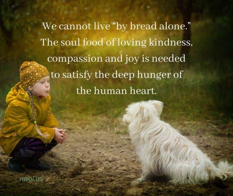We all need this soul food...and we can all give it. Let us share our hearts with each other...it will transform our world. #soul #hearts #love #Kindness #Compassion #Joy #transformation #WorldKindnessDay #World #nwol
