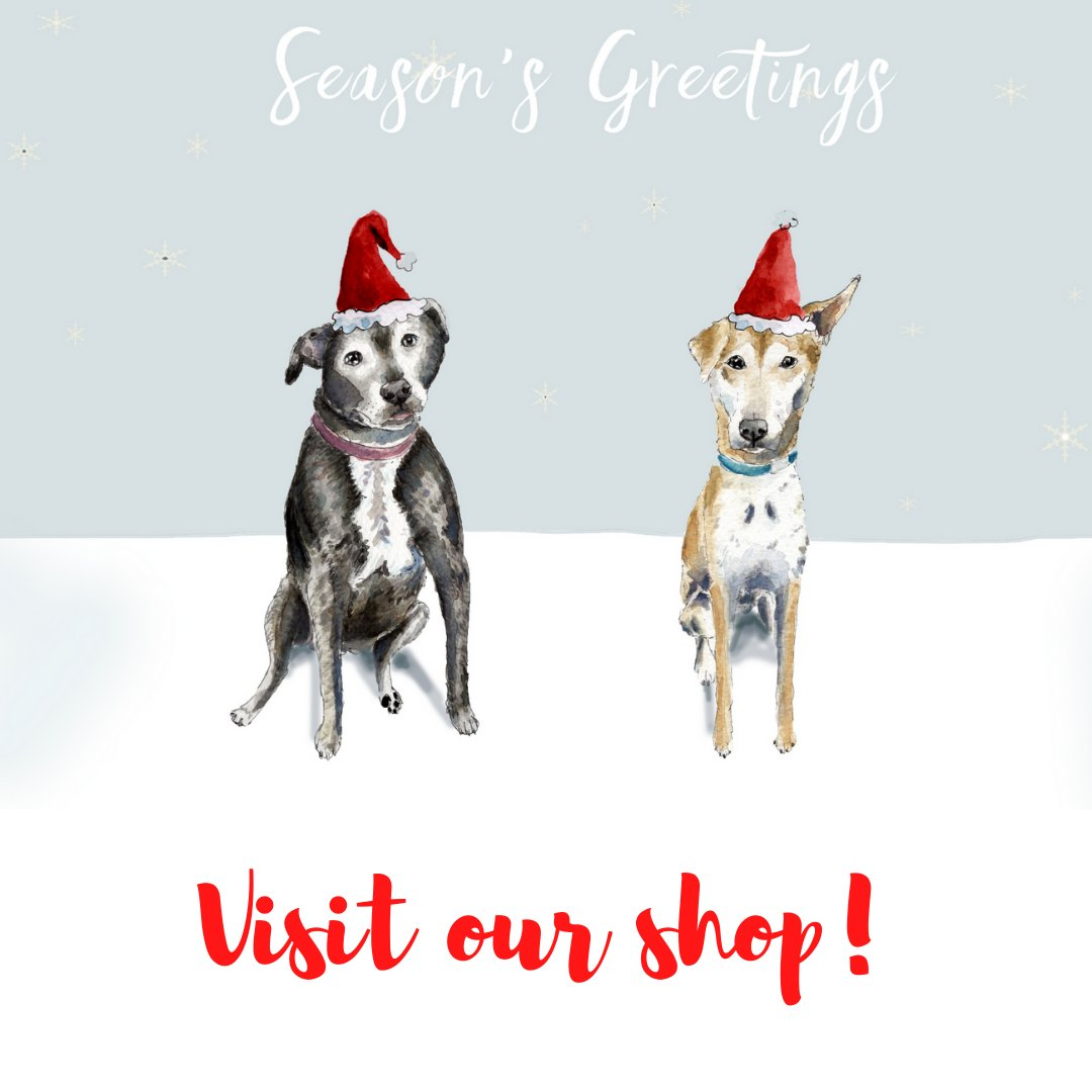 Our festive goodies are now available to buy from our online shop! 🎄Our range includes Christmas cards, jumpers, calendars, tea towels and tote bags. We also offer virtual gifts that help give our dogs the care that they need. 🐾❤️