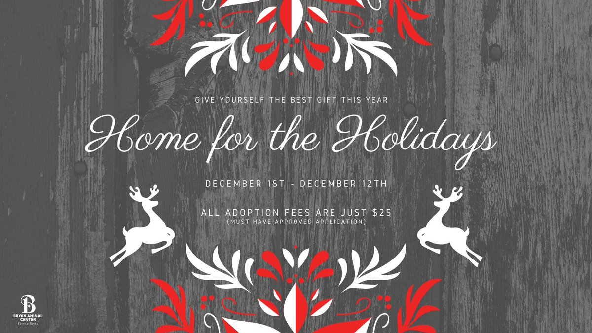 Help a shelter pet get a forever home this Christmas and give yourself the best gift at the same time....a best friend! Adoption fees are only $25 until December 12th.  #homefortheholidays #bestfriends #Adopt #Rescue #CityofBryan #Christmas #homeforchristmas #Shelterpets