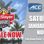 Image for the Tweet beginning: Tickets to this year's TaxSlayer