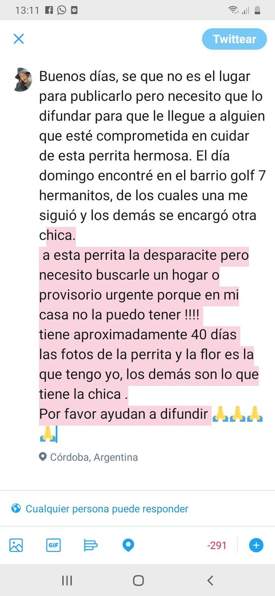 RT @CamilaCoria02: Ayudemos a encontrar un buen hogar para estos hermosos hermanitos @Ceballos_sabri https://t.co/WaQ7o8DIDf