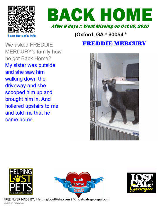 **FACEBOOK LINK:  ** #BACKHOME  We are so happy Freddie Mercury is back home after 8 days!!  We asked FREDDIE MERCURY's family how he got Back Home? My sister was outside and she saw him walking down the driveway and she scooped him up and brought him in.…