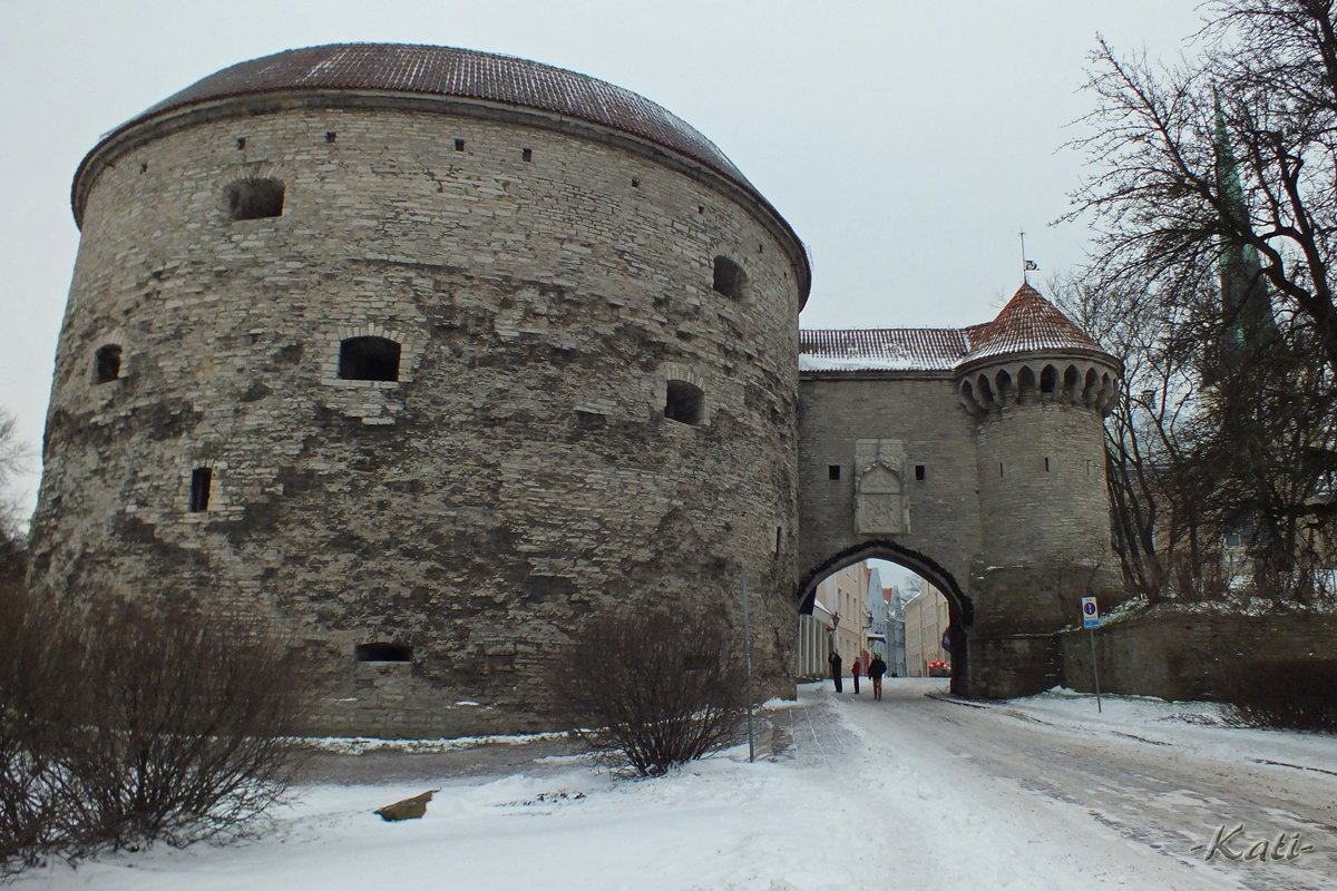 #ThrowbackTuesday: December 1st, 2012; walls and towers of snowy Tallinn Old Town. Tallinnan muureja ja torneja koleana talvipäivänä.   #Tallinn #Estonia #VisitTallinn #VisitEstonia #throwback #blastfromthepast #travelling #travelphotos #matkakuvat #reissukuvat #Tallinna #Viro https://t.co/IJzk656rWv