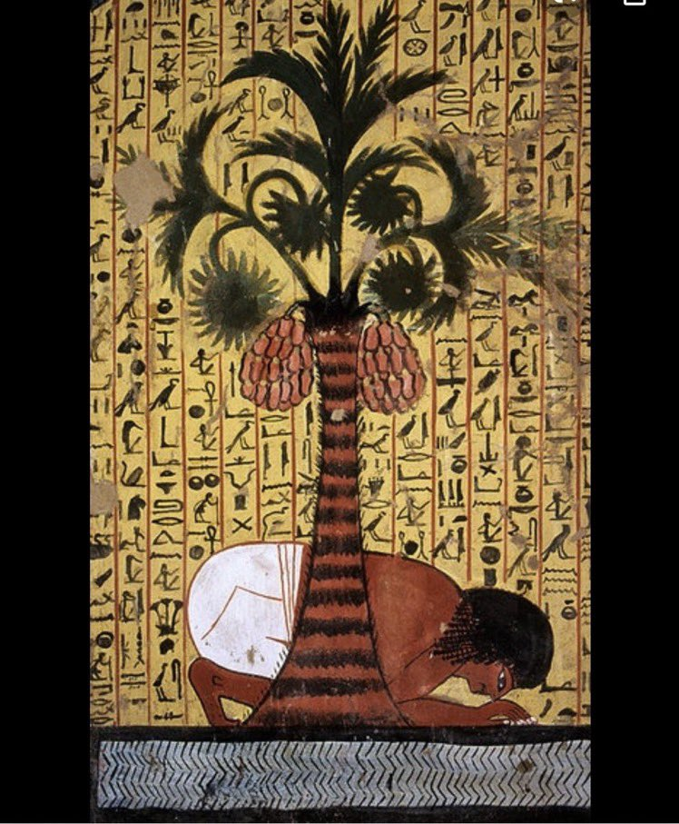 """In Egypt, there were gifts laid under palm trees during the winter solstice. In Mesopotamia & many other societies u have 12 day winter festivals and this is the origin of your """"12 Days of Christmas"""" Carols"""