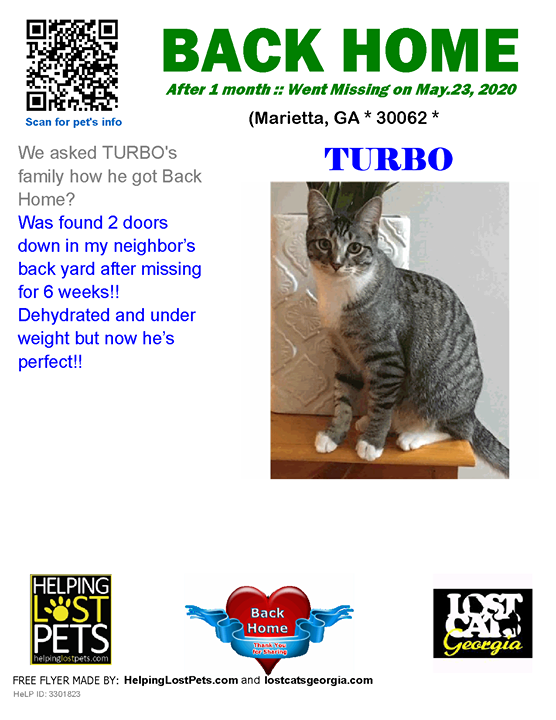 **FACEBOOK LINK:  ** #BACKHOME  We are THRILLED Turbo is back home after 1 month!!  We asked TURBO's family how he got Back Home? Was found 2 doors down in my neighbor's back yard after missing for 6 weeks!!  Dehydrated and under weight but now he's perfe…