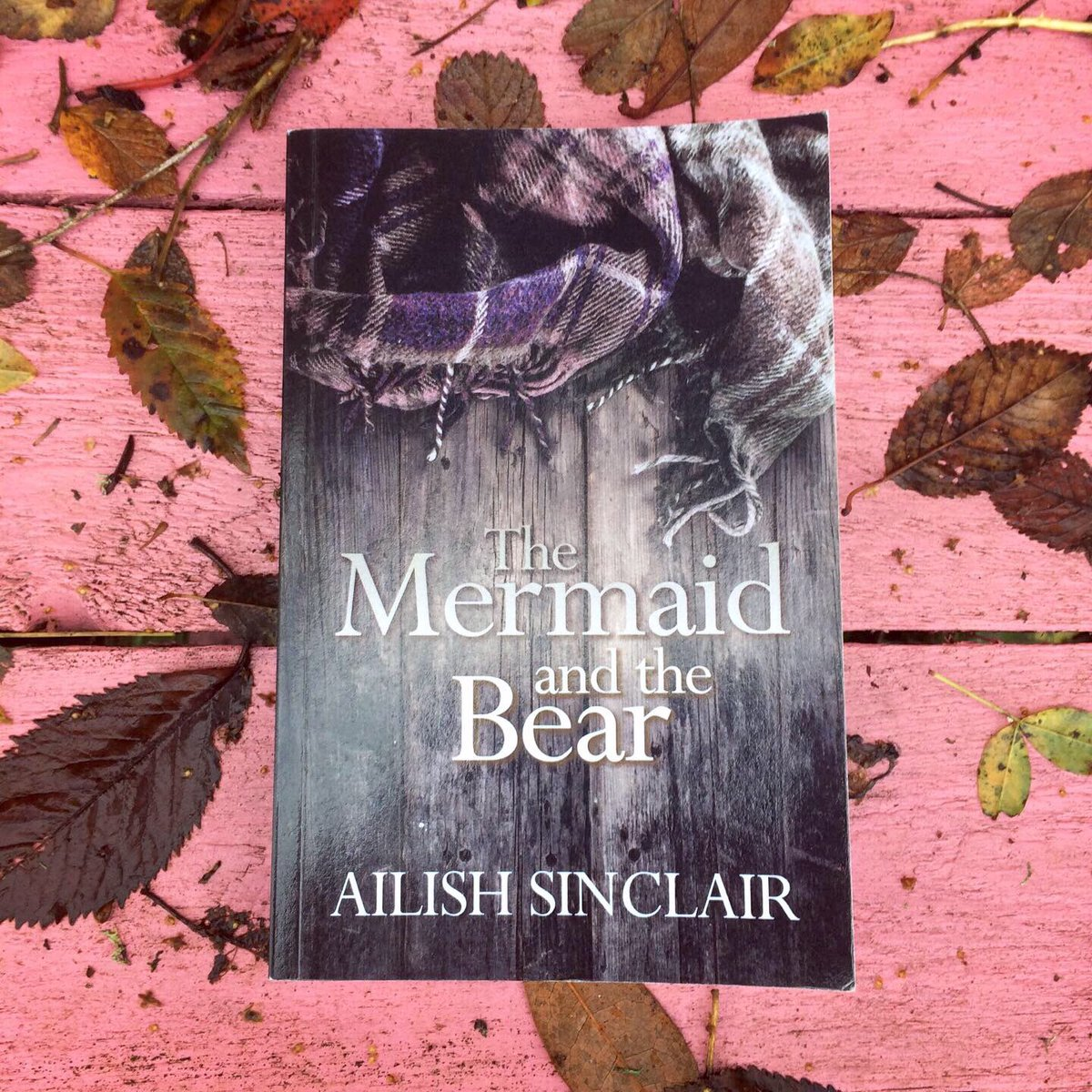 The perfect festive read or gift, THE MERMAID AND THE BEAR features:  a 16th century castle 6 chapters of medieval Christmas a witchcraft panic a stone circle and a love story.    Come taste the Twelfth Night Cake!  #books #giftideas #Christmas