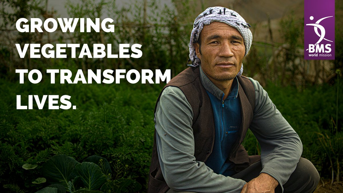 test Twitter Media - Can you imagine growing your veg on the side of a mountain?  🤩 🍍 🍐 🥕 🧅 ❤  Well, that's exactly what BMS partners and workers are enabling people like Saraab to do in Afghanistan.  Curious? Find out how these farmsteads are changing lives here: https://t.co/VNQIWIKbhN https://t.co/v8UMImU8Hq