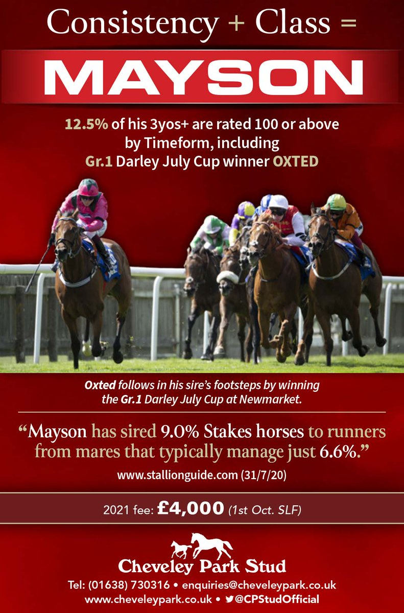 🌹Consistency + class = MAYSON 🌹  😍 12.5% of his 3yos+ are rated 100 or above by Timeform, including Gr.1 Darley July Cup winner OXTED  😍 @CPStudOfficial's son of INVICIBLE SPIRIT has sired 9.0% Stakes horses to runners from mares that typically manage just 6.6%...