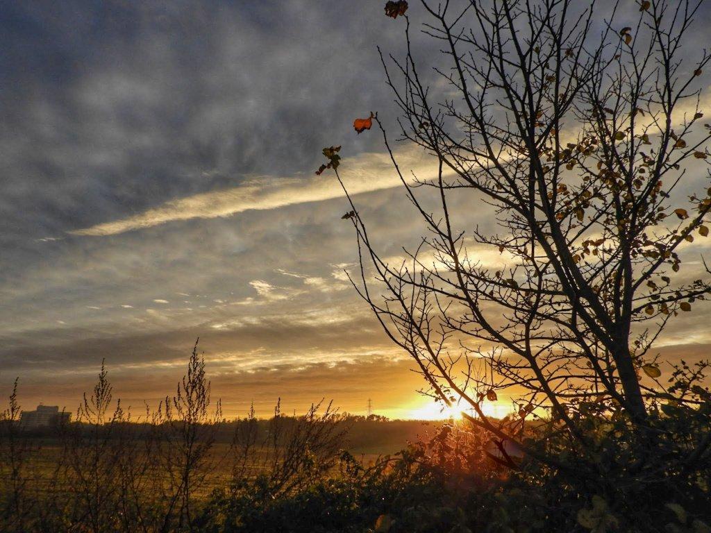 An entry for @RMetS #stormhour #POTW Wednesday's sunrise Graveley Hertfordshire UK