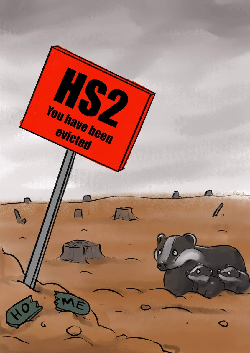 #HS2 are brutally blocking the entrances to Badger setts so they can't return home. @Hs2Rebellion @stophs2 @bearwitness2019 @ChrisGPackham @WoodlandTrust @XRebellionUK #hs2rebellion #ecocide #stophs2 #badger image by Scabbage