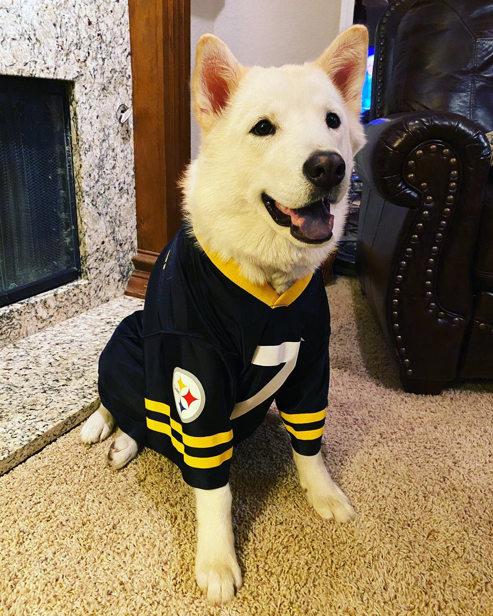 Who's ready for Wednesday Afternoon Football?!? @steelers #SteelersNation #Steelers #HereWeGo #WednesdayAfternoonFootball