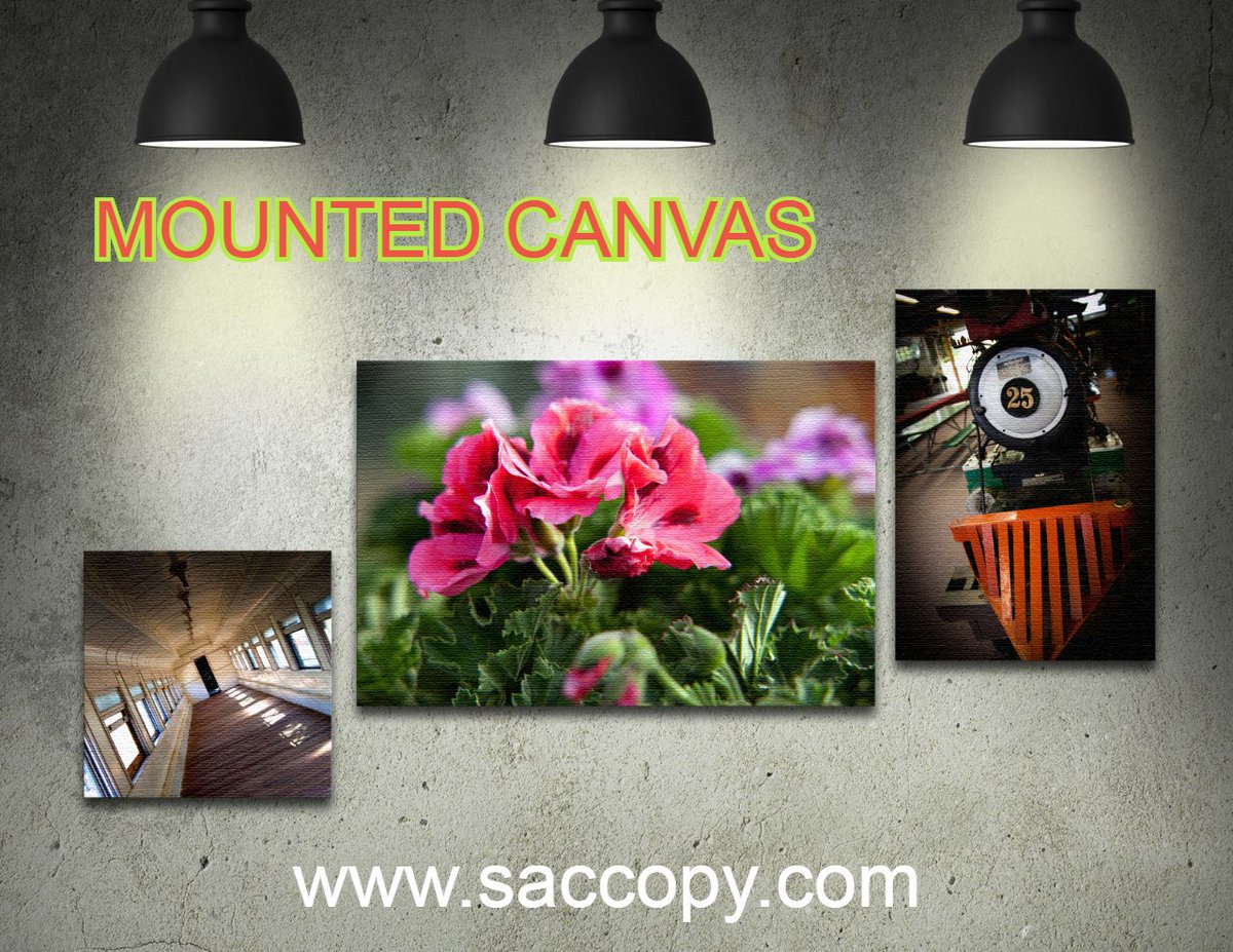 Mounted Canvas   Mounted Canvas prints are a great way to display logo images, photographs and more. They also make great gifts and are available in a variety of standard sizes.  #canvas #artwork #lobbyart #marketing #businessowners #greatgifts #sacramento