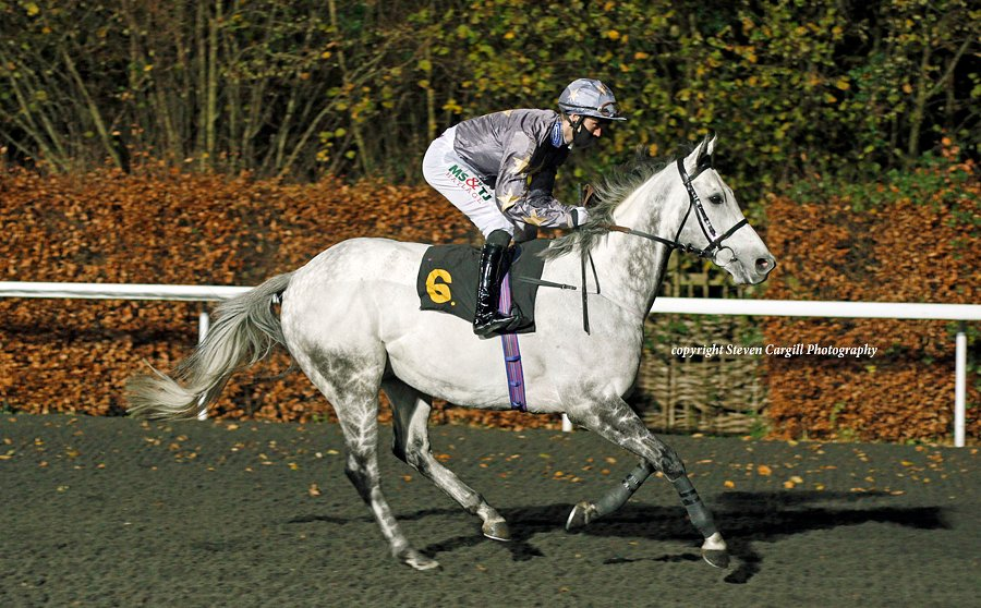 8th win for 6yo g BRIAN THE SNAIL (Zebedee) in 6f handicap @kemptonparkrace tonight for @RichardFahey @drmarwanK