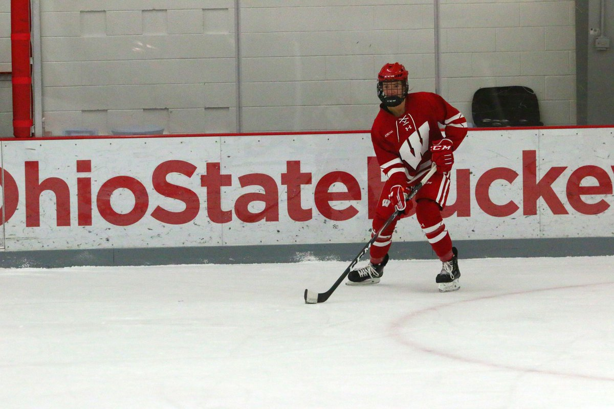 Wisconsin women's hockey: a pair of #Badgers win weekly WCHA awards  Sophie Shirley and Nicole LaMantia had monster weekend and were rewarded for it!