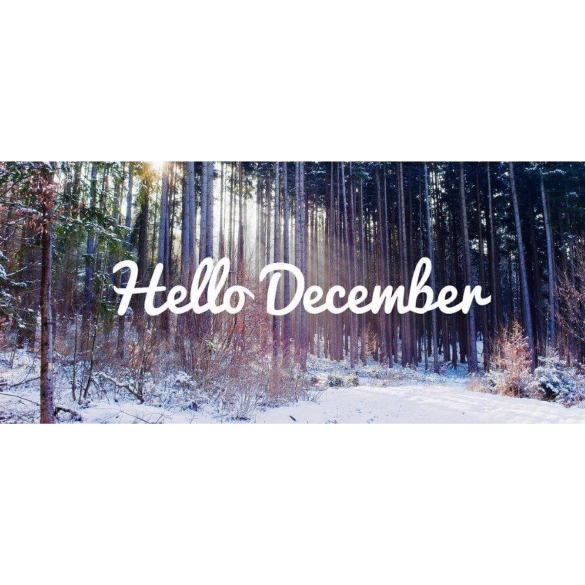 ❄️☃️Hello December may your days be merry and bright! ☃️❄️ #december #xmas #christmas #hoildayspirit #blessings #joy #love #positivevibes