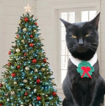 Christmas outfit for your pets 🎄 Check out: https://t.co/JmGxYqM9sC #cats #CatsOfTwitter #Caturday #Christmas #ChristmasTree #NewYear #costume #Halloween2020 #dogsoftwitter #CuteCats #cutenessOVERLOAD #funniest #catsincostume2020 #costume #BlackCat #BlackCatsDay https://t.co/eGU6YscaWn