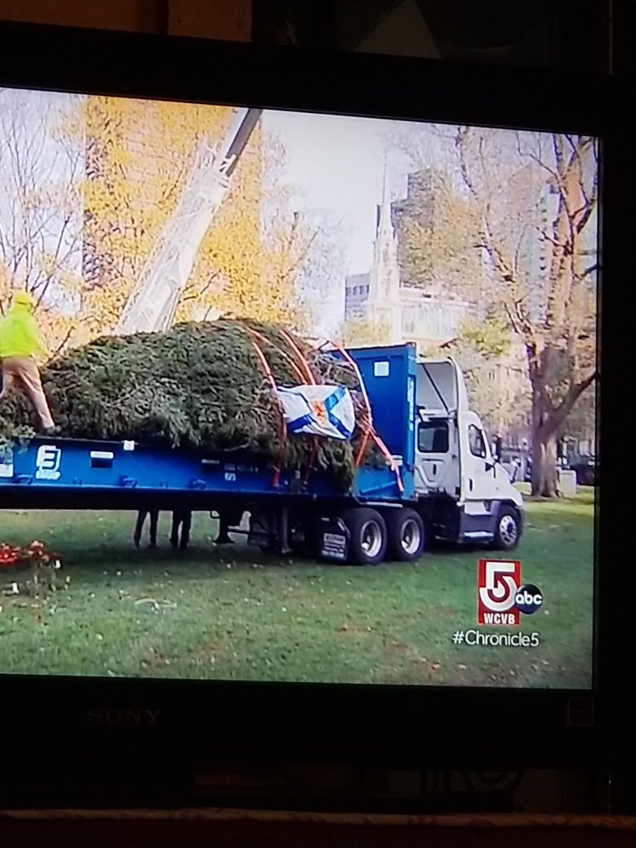 The yearly tradition of Nova Scotia sending Boston a Christmas tree. Despite COVID, the tradition goes on. The tree was sent by boat. Tomorrow night at 7 pm, @WCVB Holiday Lights, singers, dancers, fireworks. https://t.co/qZmARlkoWF Thank you @novascotia @JustinTrudeau https://t.co/7W3obtNmM0