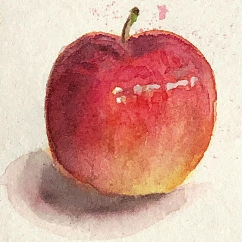 水彩練習と言えばリンゴでしょ、ってことで、リンゴ描いてみた。 とちゅう失敗したけど、重ね塗りで何とかリカバリー。光源がおかしい気がする。  #水彩 #透明水彩 #ホルベイン #watercolor #drawing #アルビレオ #albireo