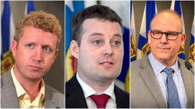 """Can u believe this?!>""""Premier #StephenMcNeil has repeatedly said it's not his job to detail what his govt has spent this year on #COVID19 stimulus projects."""" Liberal leadership contenders promise to release COVID-19 spending details. #Liberals #nspoli  https://t.co/aanQ9cx6rU https://t.co/FVwaRnyQd2"""
