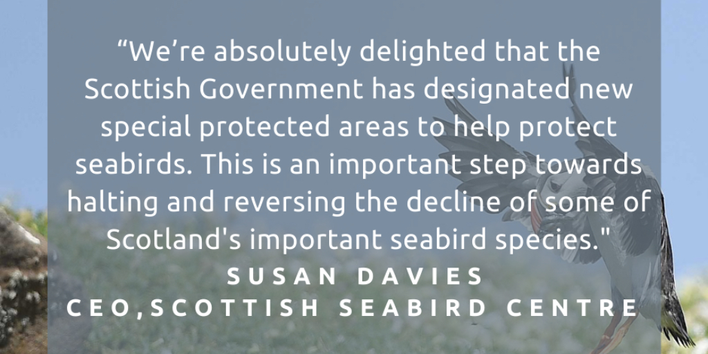 Very welcome news from The Scottish Government this morning on the designation of 12 Special Protection Areas (SPAs) and four Marine Protected Areas (MPAs) in Scotland's seas.  An important step in protecting Scotland's marine wildlife and habitats. https://t.co/t5uBdohGmc https://t.co/70E99QfQUs