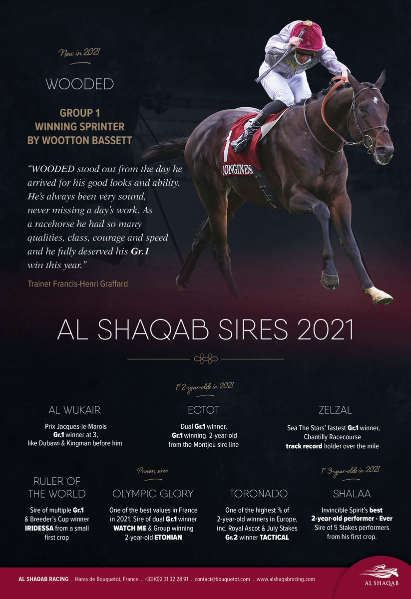 🔥 @AlShaqabRacing STALLIONS FOR 2021 🔥  💫 AL WUKAIR 💫 ECTOT 💫 WOODED 💫 OLYMPIC GLORY 💫 TORONADO 💫 SHALAA 💫 RULER OF THE WORLD 💫 ZELZAL  Don't miss out and see contact below for more details👇